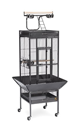Prevue Pet Products Wrought Iron Select Bird Cage Review