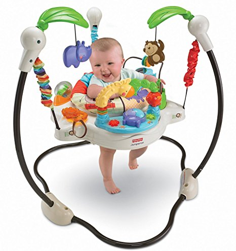 Fisher-Price Luv U Zoo Jumperoo Review