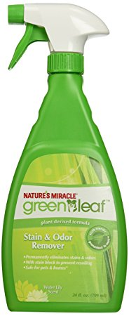Nature's miracle green leaf stain and odor remover Review