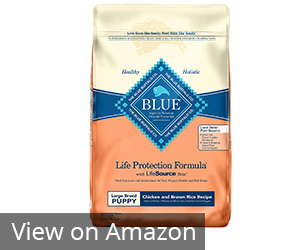 Blue Buffalo Life Protection Formula Dry Puppy Food Review