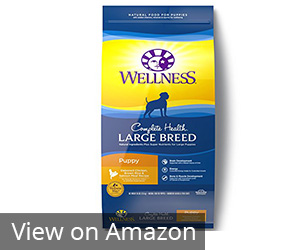 Wellness Natural Pet Food Complete Health Natural Dry Large Breed Puppy Food Review