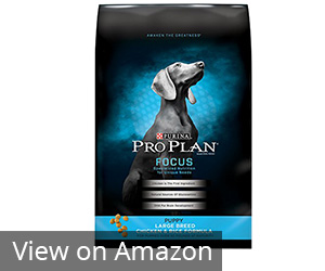 Purina Pro Plan Focus Puppy Large Breed Dry Dog Food Review
