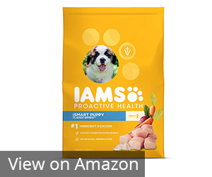Iams Proactive Health Puppy Dry Dog Food Review