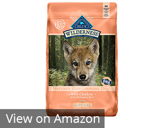 Blue Wilderness High Protein Grain Free Puppy Dry Dog Food Review