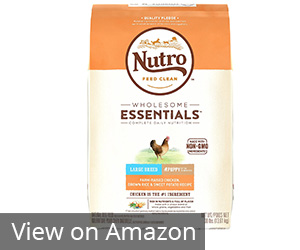 Nutro Wholesome Essentials Puppy Dry Dog Food Review