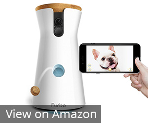 Furbo Dog HD Wifi Pet Camera Review