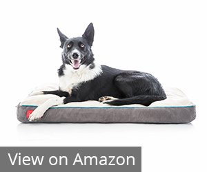 1. BRINDLE Soft Memory Foam Dog Bed Review