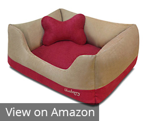 2. Blueberry Pet Heavy Duty Pet Bed Review