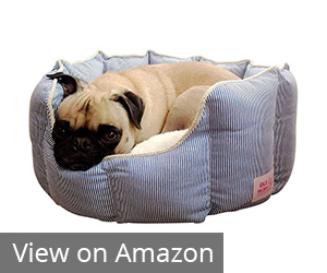 10. Good Life Solutions Premium Quality Luxury Pet Beds Review