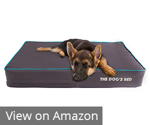 9. The Dog's Bed, Premium Orthopedic Memory Foam Dog Beds Review