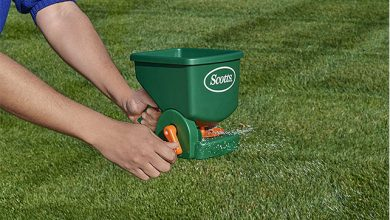 Best Handheld Fertilizer Spreader